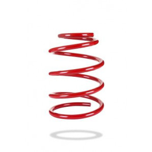 Sports Ryder Coil Spring LH 2554L at Pedders in Enoggera, QLD | Tuggl